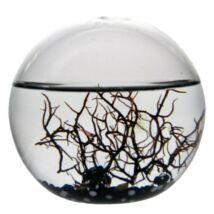 EcoSphere Önfenntartó Ökoszisztéma (gömb alakú, fekete kaviccsal)