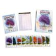 Arboretum társasjáték - a doboz tartalma, komponensek