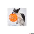 Hyperflite Frostbite pup kutyafrizbi
