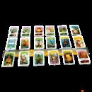 A közös kártyakészlet, ahonnét vásárolni lehet | Eldorádó legendája társasjáték (The Quest for El Dorado)