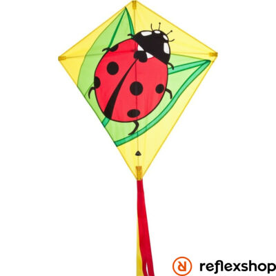 Invento Eddy Ladybug sárkány