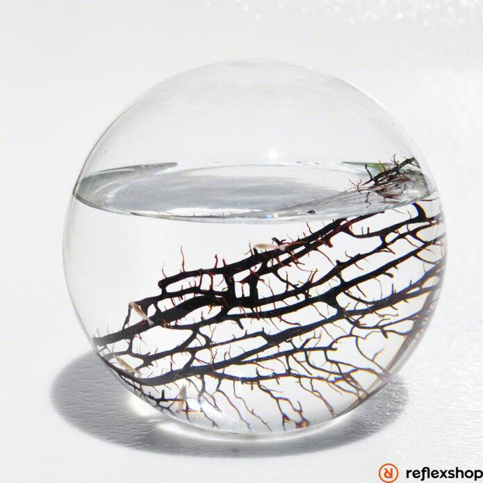 EcoSphere Önfenntartó Ökoszisztéma (gömb alakú fehér kaviccsal)