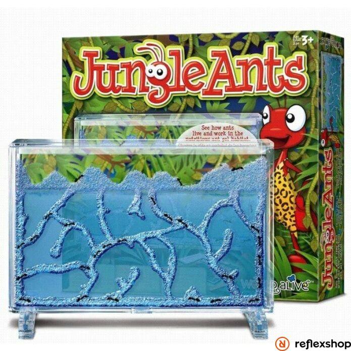 World Alive Jungle Ants hangyafarm